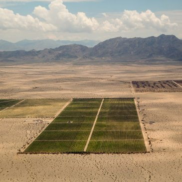Investors Mining for Water